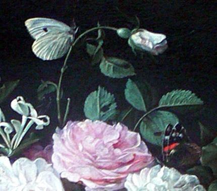 PapillonsPilipsDeMarlier1640.jpg