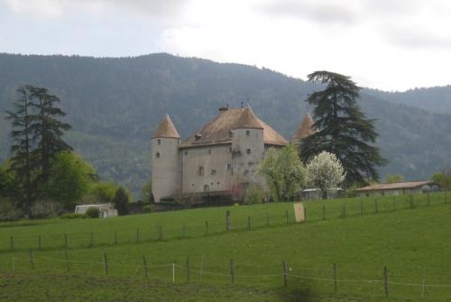 chateau de buffavent , lully, seigneurs de langin